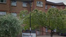 Elmwood